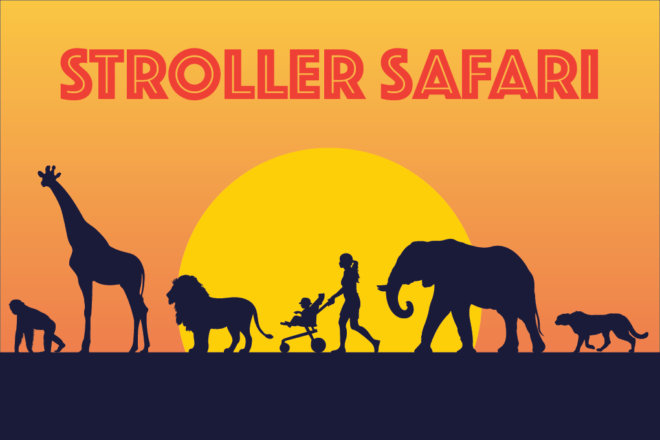 Stroller Safari image