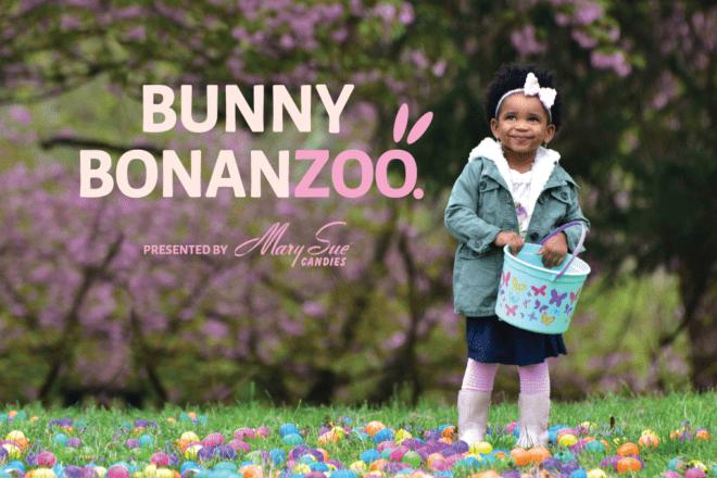 Bunny BonanZoo event header