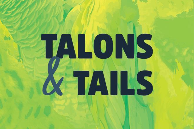 Talons & Tails Encounter image