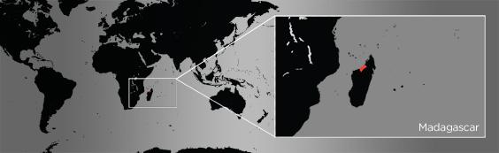 sifaka map