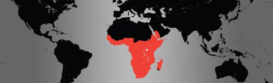 Hamerkop map