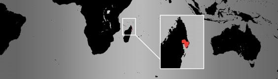red ruffed lemur map