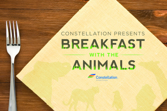 Breakfast with the Animals image