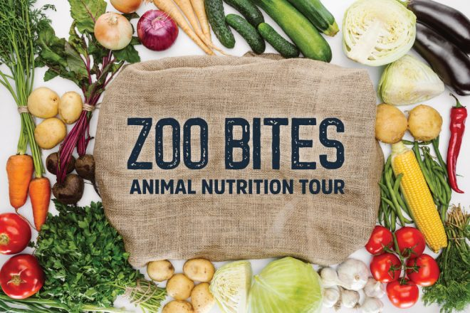 Zoo Bites: Animal Nutrition Tour image